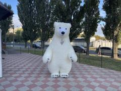 Start your promotion with an inflatable polar bear costume